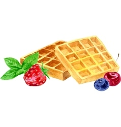 watercolor wafers and berries vector image vector image