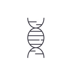 dna line icon concept dna linear vector image