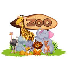 group wild animals vector image