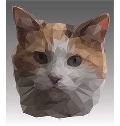 Low poly portrait giger and white kitten poly vector