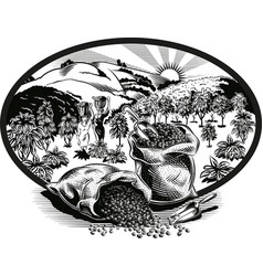Oval frame with bags of coffee and plantation vector