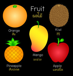 Pictures of various fruits vector