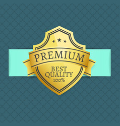 Premium best quality award 100 guarantee vector
