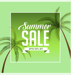 summer sale background with palm tree vector image