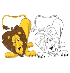 surprised lion vector image