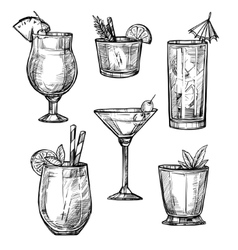 Alcoholic cocktail hand drawn sketch set vector image