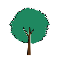 green tree trunk bush nature forest vector image vector image