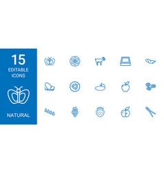 15 natural icons vector