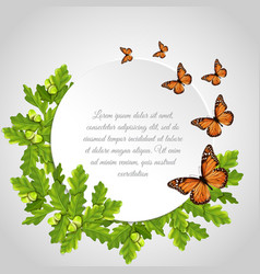 butterflies round frame vector image