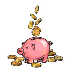 cartoon piggy bank with falling coins vector image