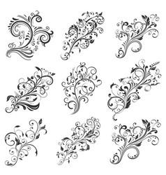 Floral decorative elements collection vector
