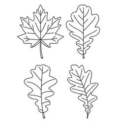 Line art black and white 4 oak leaf set vector