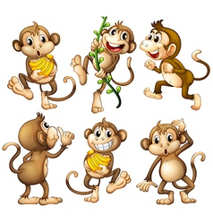 Playful wild monkeys vector