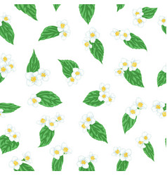 Semless pattern branch flower jasmine with green vector