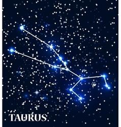 Symbol Taurus Zodiac Sign vector image