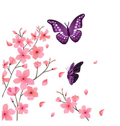 butterfly and sakura flower background imag vector image