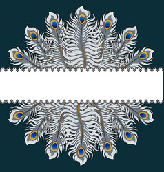 postcard with silver peacock feathers and ribbon vector image