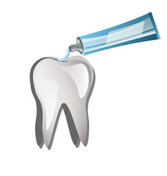 tooth with toothpaste vector image vector image