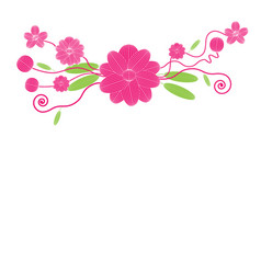 flowers on white background vector image