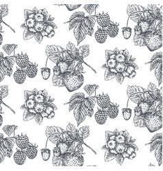 seamless pattern with hand drawn berries in vector image