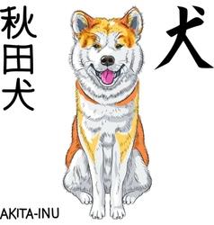 sketch dog Akita Inu Japanese breed smiles vector image