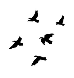 black flying birds flock concept vector image