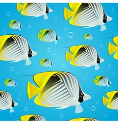 Seamless background - tropical butterflyfish vector image vector image