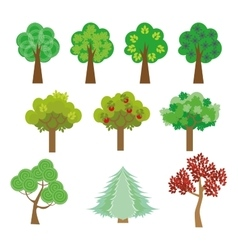 trees set in a flat design style to the streets or vector image