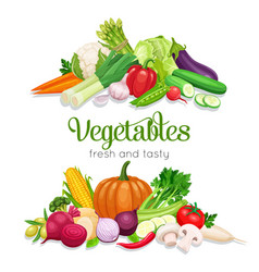 Banner with vegetables vector