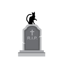 cat sits on the grave vector image