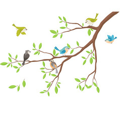 cute birds with tree branch vector image