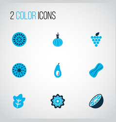 fruit icons colored set with onion fig orange vector image