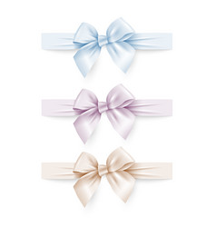 set of pastel colors silk bows with ribbons vector image