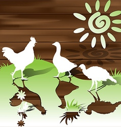 Silhouettes of the fowls vector