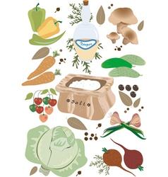 Vegetables for pickling vector