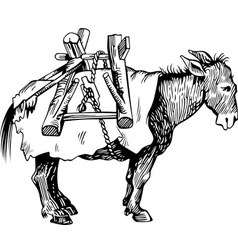 Transportation donkey vector image