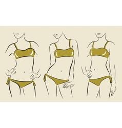 woman in bikini vector image