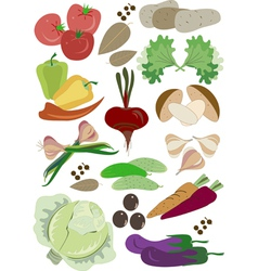 Colorful fresh group of vegetables vector image