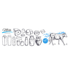 dairy products collection cow milk vector image