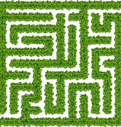 Green Maze vector