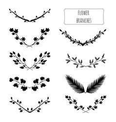 hand drawn floral set vector image