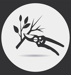 Pruning secateurs vector image