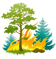 Wildfire disaster vector