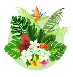 colorful tropical plants design vector image vector image