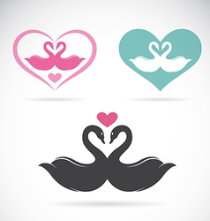 Swans loving vector image vector image