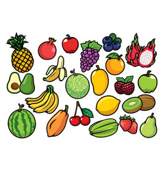 Fruits set collection vector