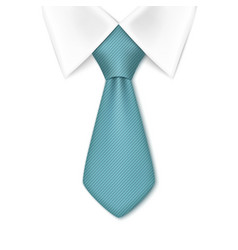 Tie isolated on white background vector