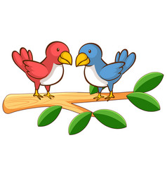 two birds on white background vector image