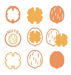 Walnut nutshell icons set vector image vector image