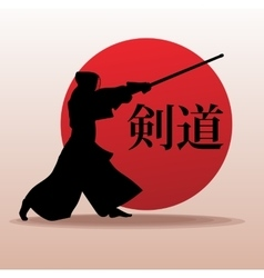 Kendo fighter in traditional clothes silhouette vector image vector image